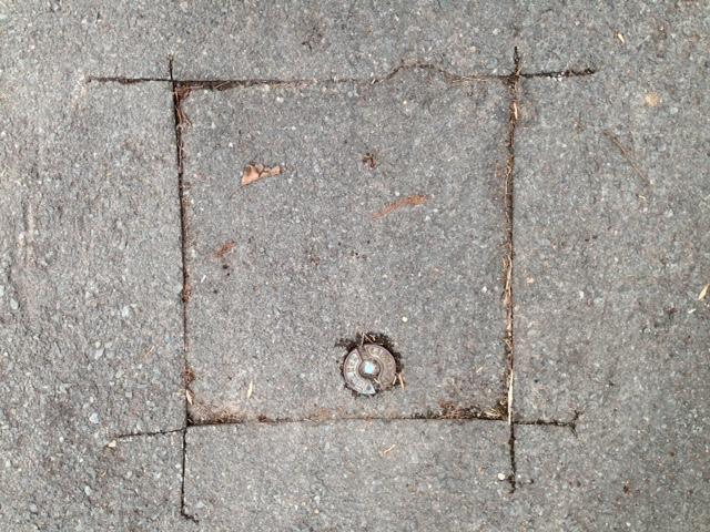 04_Barbara_square
