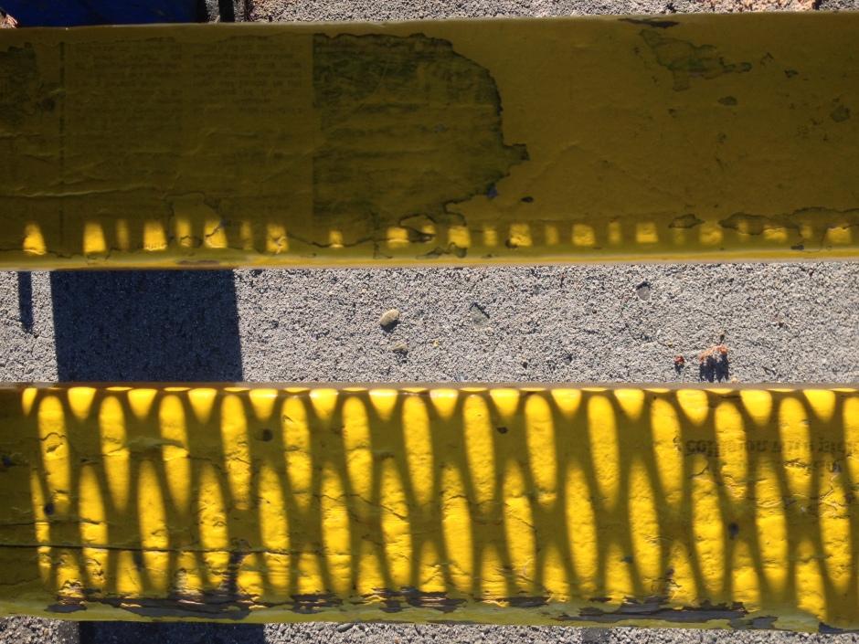 05_SG_yellow