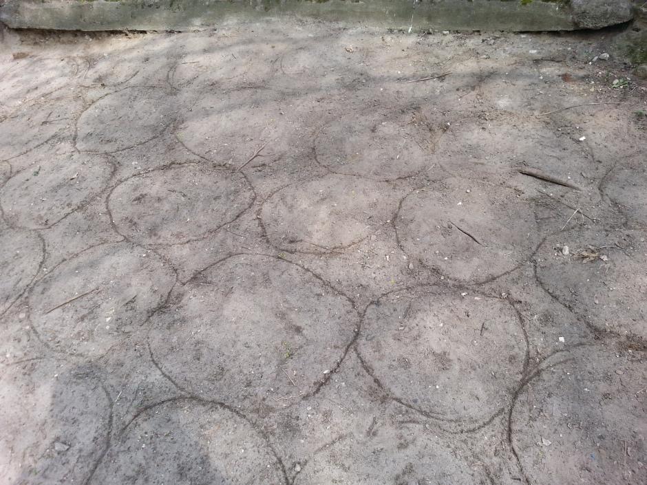 19_MB_sand_circles